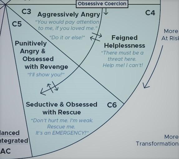 C+ attachment self-protective strategies