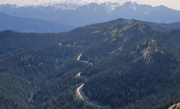 Olympic mountain high country road